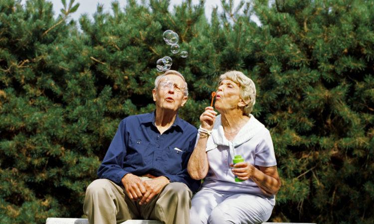 Сеть пансионатов для пожилых